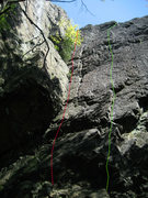 Rock Climbing Photo: Far left of Right Wing Wall: Red - Herbarium Green...