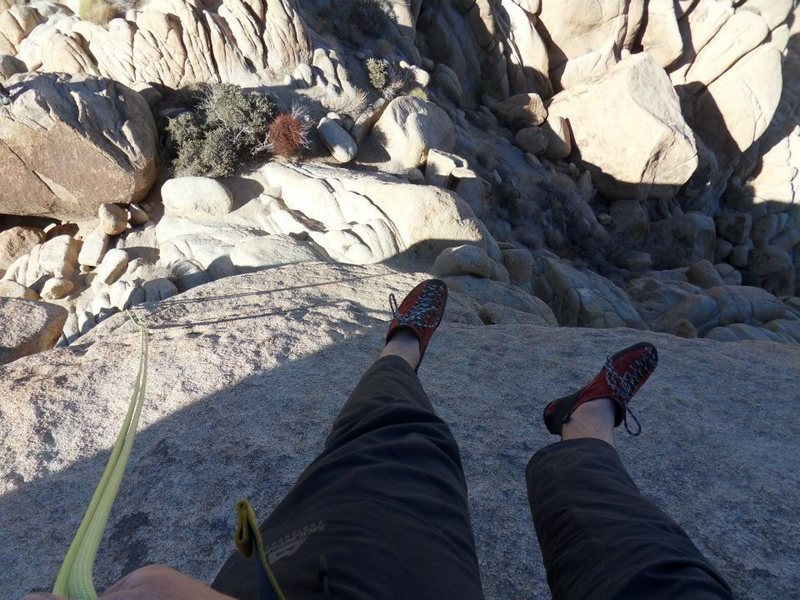 Rock Climbing Photo: Rapping off Moosedog tower, Indian Cove, JT