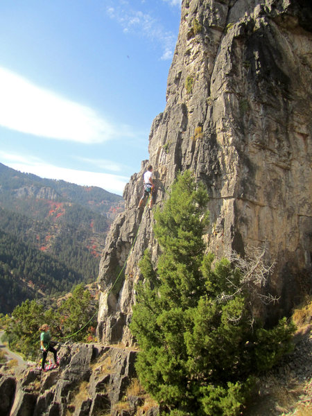 Rock Climbing Photo: Climb'n with Cass!