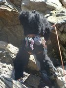 Rock Climbing Photo: Sasquatches are real!