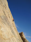 Rock Climbing Photo: Andy on P1
