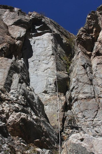 The Arete Rules line. Climber (RMW) is out of sight left of bush at top.