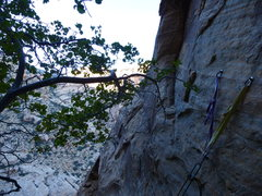 Rock Climbing Photo: 2nd rap, 1st bolted station.