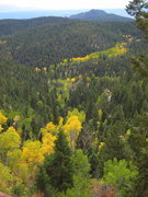 Rock Climbing Photo: A river of aspens during September at the Wipeyur ...