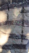 Rock Climbing Photo: Rock colorations i.e Purple Stripes.  To be found ...