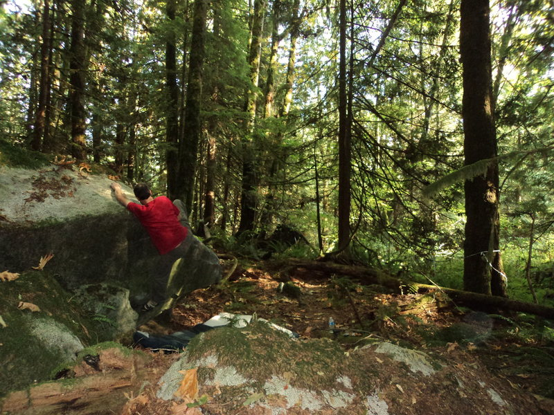 Rock Climbing Photo: Lower