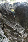 Rock Climbing Photo: looking up at this short but fun climb