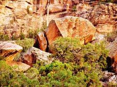 Rock Climbing Photo: Brachiosaurus Boulder's west face.