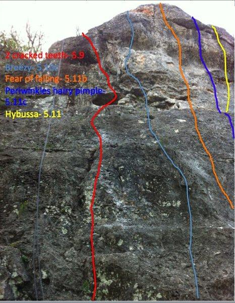 Rock Climbing Photo: buda belly wall beta- Medicine wall San Antonio, c...