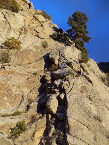 Rock Climbing Photo: If you want to walk off, this is the tree and bloc...