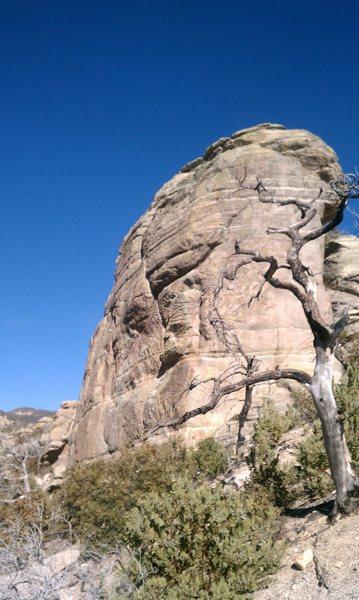 Rock Climbing Photo: Hawk Rock
