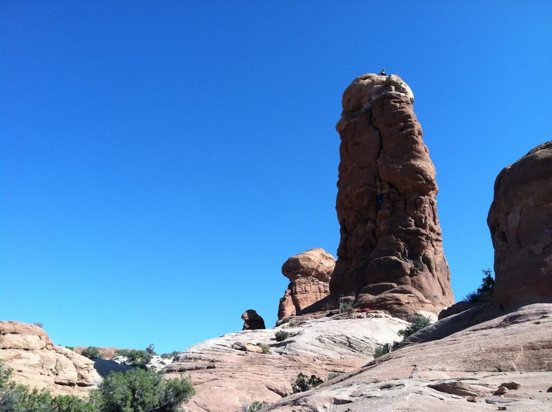 """""""The Owl"""" Arches NP"""