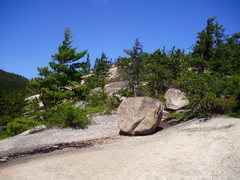 Rock Climbing Photo: The top of Carter Ledge near the trail.