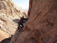 Rock Climbing Photo: Some old geezer we met wandering around in the can...