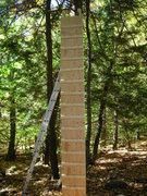 Rock Climbing Photo: 16' plice training setup