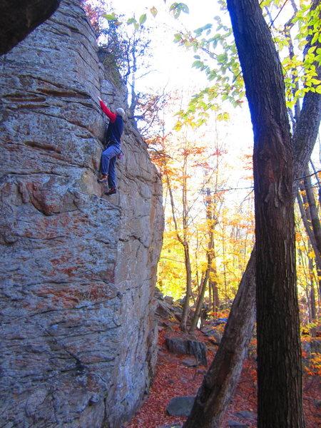Rock Climbing Photo: Mo Mo