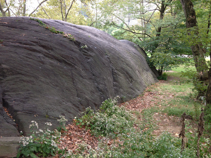 Rock Climbing Photo: Traverse this or climb up anywhere.  Good practice...