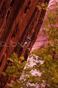 Rock Climbing Photo: Eric Kozera on Namaste.