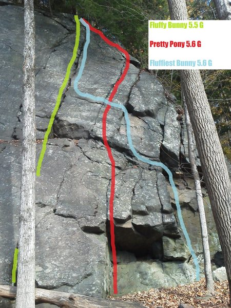 Rock Climbing Photo: Pretty Pony beta photo