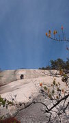 Rock Climbing Photo: At the top of the groove P3