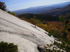 Rock Climbing Photo: The lonely Belay Tree on Carter Ledge Direct from ...