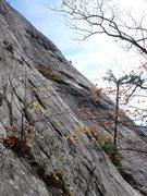 Rock Climbing Photo: Buried Treasure.