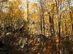 Rock Climbing Photo: Bald Rock Basin in Peak Foliage