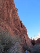 Rock Climbing Photo: Jen on Cowboy Curse.
