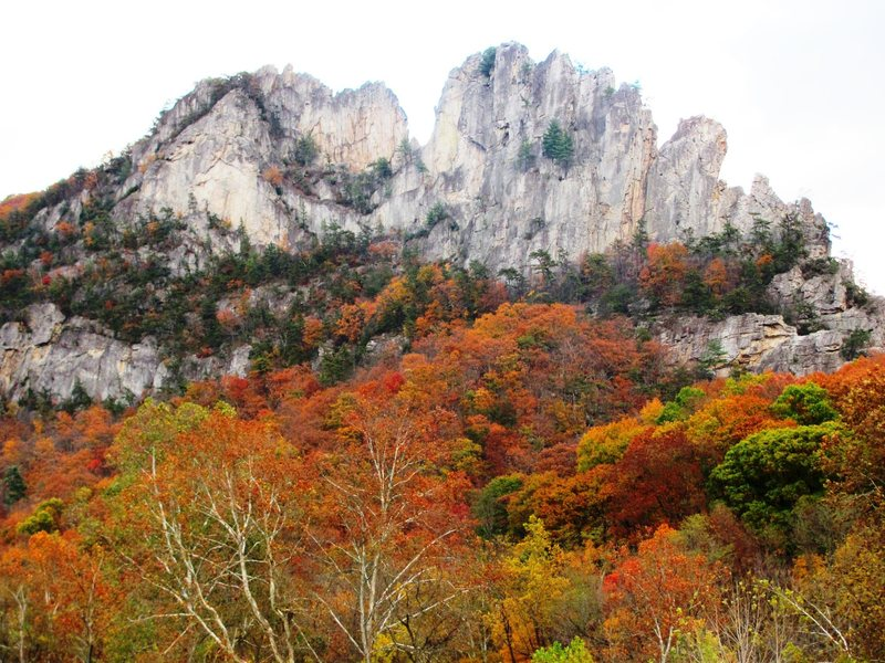 Rock Climbing Photo: Seneca Rocks