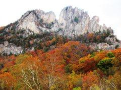 Rock Climbing Photo: Seneca Rocks
