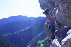 Rock Climbing Photo: June in Big Cottonwood Canyon