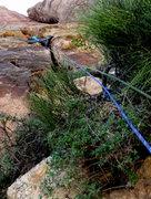 Rock Climbing Photo: Scramble through brush. Grovel into flare. P2.   P...
