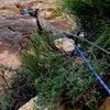 Scramble through brush. Grovel into flare. P2. <br> <br> Photo: Nathan Scherneck