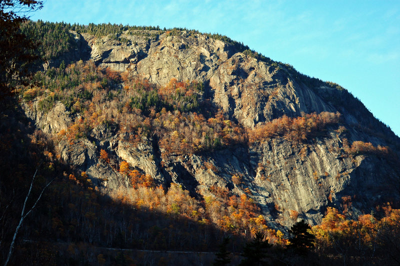 "Mt. Willard - If you extend the right-hand branch of the birch tree just a little bit further it touches big, right-facing corner of ""Mice & Men"" on Buttress@POUND@1@SEMICOLON@ the other climbs of Buttress@POUND@1 are to the right and below."