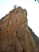 Rock Climbing Photo: Exhibition Wall