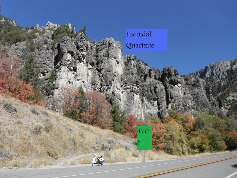fucoidal quartzite as seen from the road at mile marker 470.5