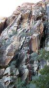 Rock Climbing Photo: Creature feature