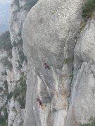 Rock Climbing Photo: Jazz Punt, 8a.  Sant Benet Area, Montserrat.
