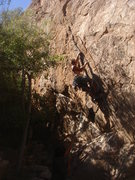 Rock Climbing Photo: Ben working the unrelenting finger cracks of Di-vi...