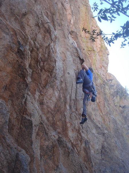 Sara climbing Jaw Breaker.