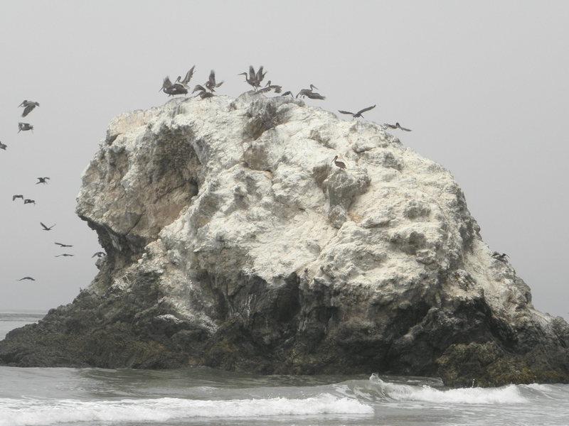 Rock Climbing Photo: skull rock closer