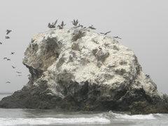 skull rock closer
