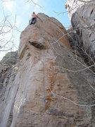 Rock Climbing Photo: Restless Natives.