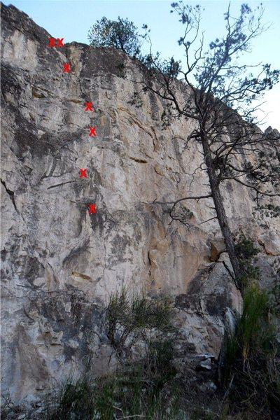 Rock Climbing Photo: Tunnel Vision bolts