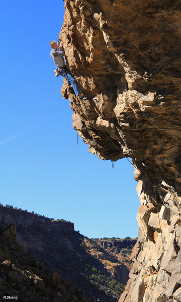 Rock Climbing Photo: Cruising through the finish Survival of the Fittes...