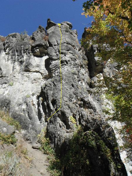 Rock Climbing Photo: Cushions