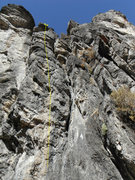 Rock Climbing Photo: Community Effort