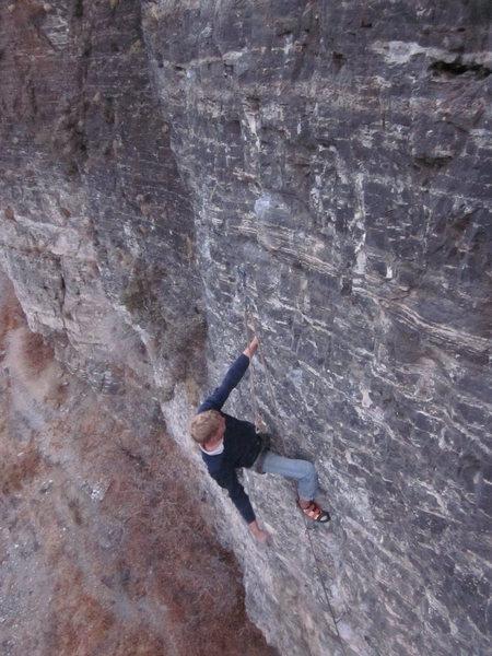 Rock Climbing Photo: Monkey Meet