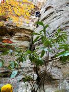 Rock Climbing Photo: Alternative Medicines