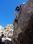 Rock Climbing Photo: Feeling out the many unforgiving options here.